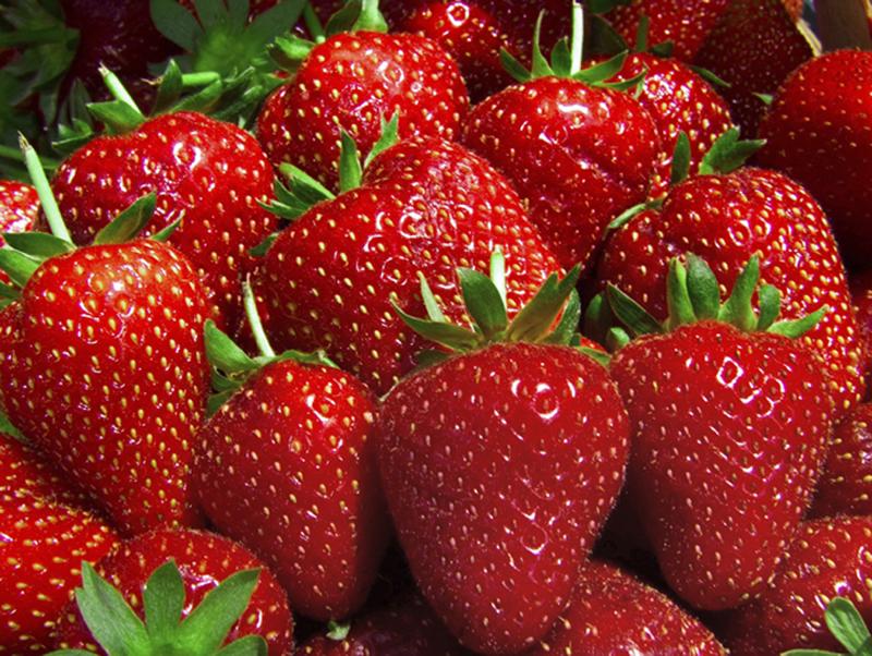 Strawberry Shortcake Sunday